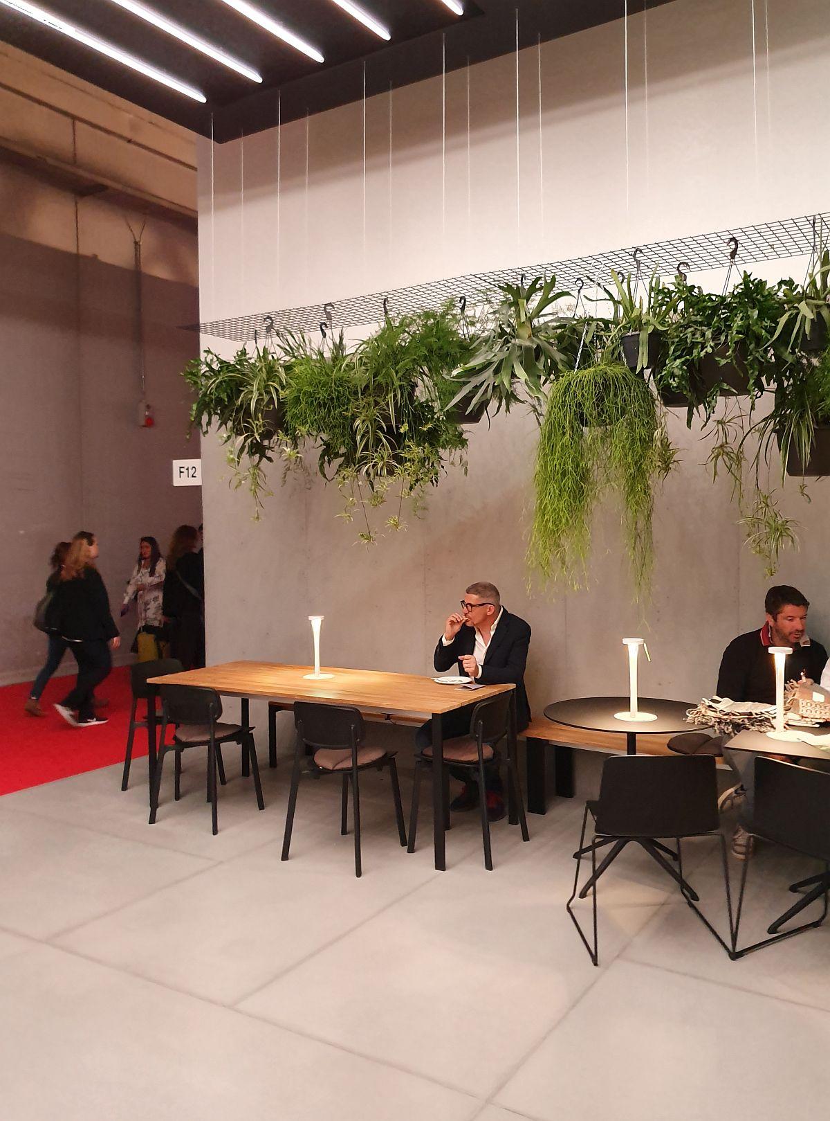 Plante suspendate care atrăgeau privirile, dar care schimbau imediat ambientele din simple în primitoare. Aici zona dedicată clienților din standul Kristalia.