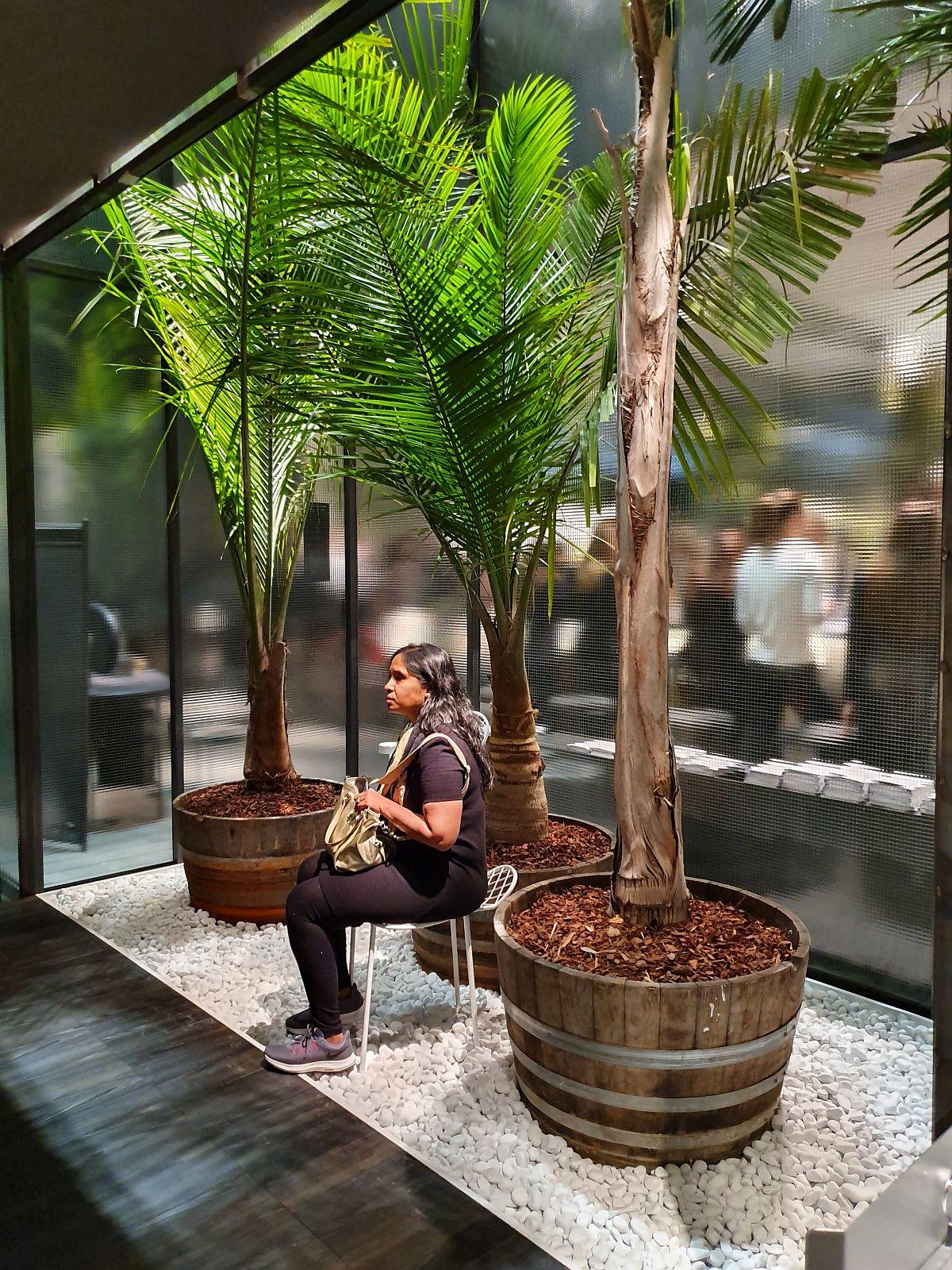 Da, plante imense care te făceau să uiți că ești într-un pavilion expozițional și care te invitau să te relaxezi, să te așezi, să observi. O stare de bine pe care plantele au dat-o multor oameni.