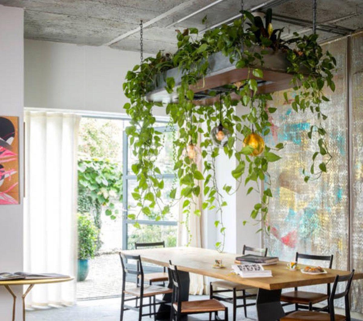adelaparvu.com despre idei de decorare a casei cu plante (2)