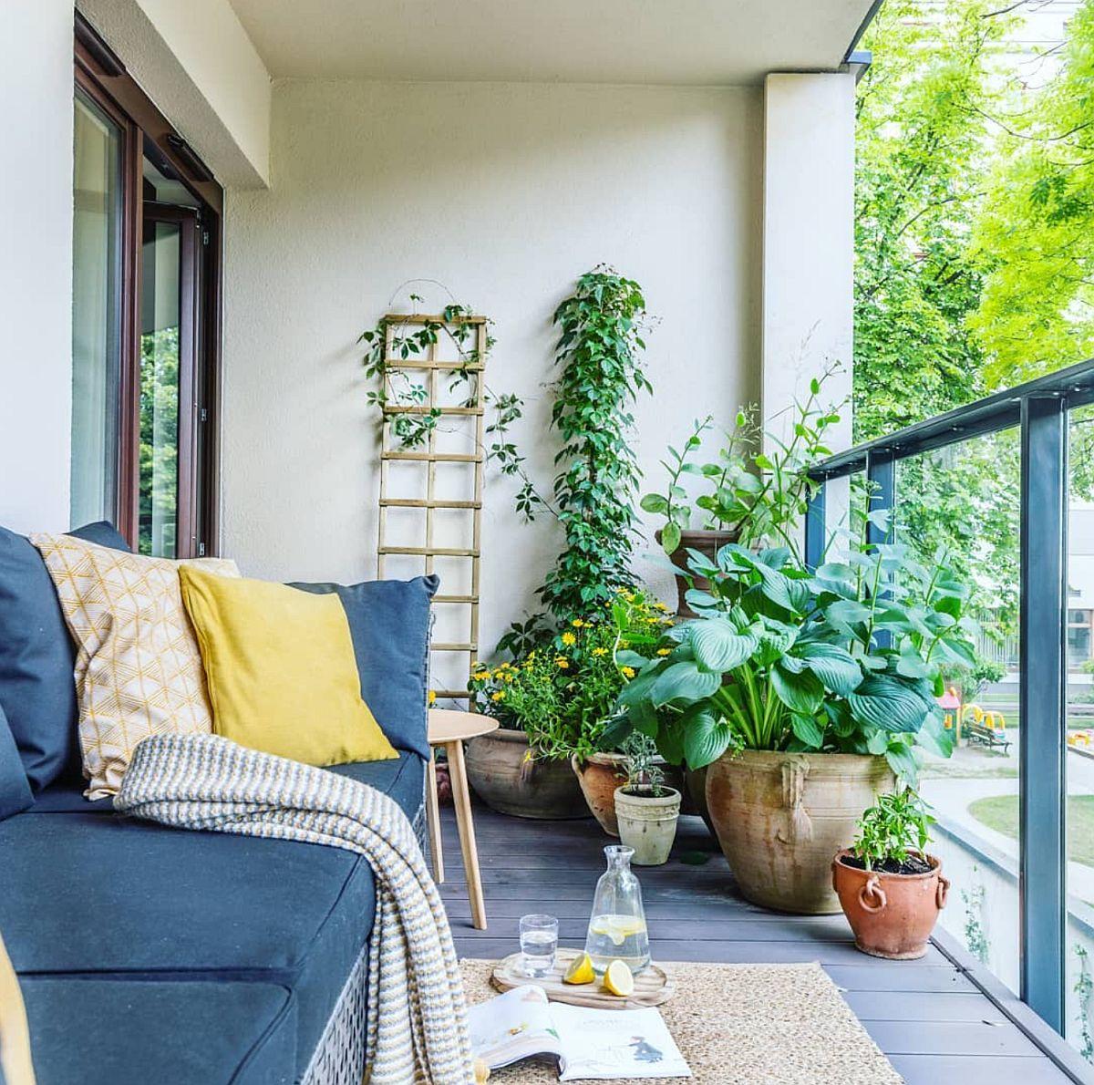 Zona cu plante din dreptul dormitorului a fost amplasată mai aproape de accesul în camera de odihnă astfel ca de la interior să fie cât mai prezente.