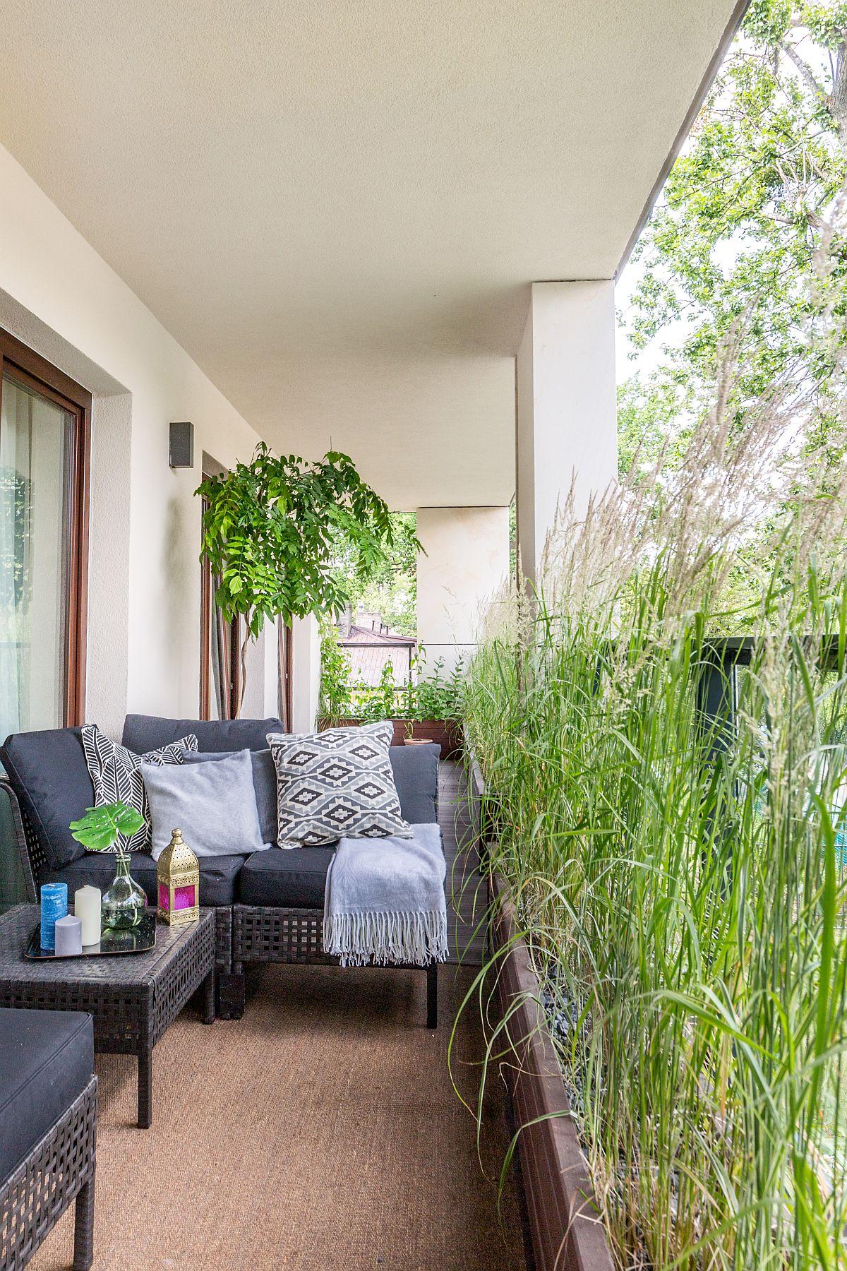 Balustrada din sticlă a balconului a fost camuflată de jardiniere cu plante înalte, care asigură intimitate.