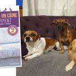 adelaparvu.com despre carte dedicata cresterii cainilor, Foto Adela Parvu (6)