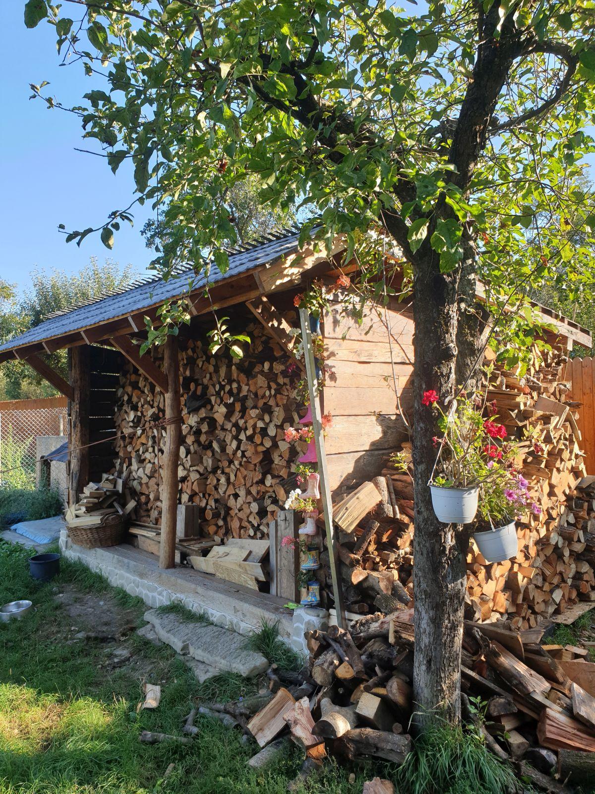 adelaparvu.com despre magazie de lemne transformata in bucatarie, casa de lemn Romania, Foto Adela Parvu (9)